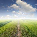 Zasiedzenie nieruchomości a zasady współżycia społecznego